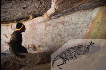 canguro arte rupestre